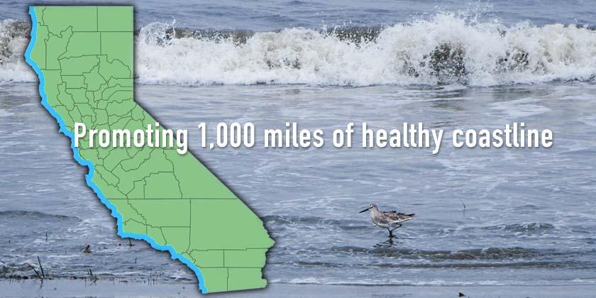 Outline of California against ocean backdrop