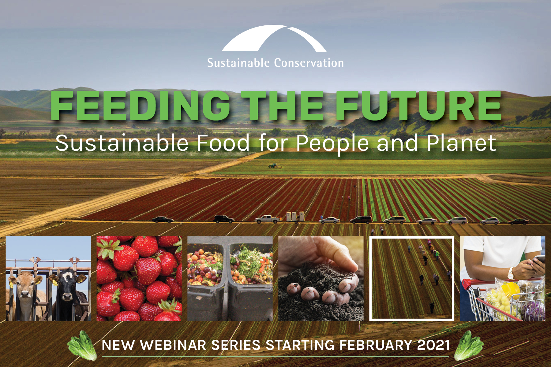 Feeding the Future webinar series